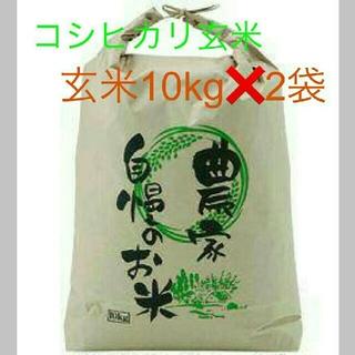 8月15日発送29年度滋賀のコシヒカリ玄米20kg 10kg✖2袋お米送込