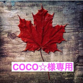 ダイソン(Dyson)の【COCO☆様専用】ダイソン V8  Fluffy コードレス 掃除機(掃除機)
