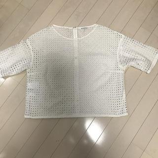 ニジュウサンク(23区)の23区カットソー サイズ46(カットソー(半袖/袖なし))