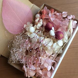 5 ピンク系 花材セット(プリザーブドフラワー)