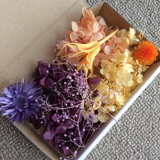 7 パープル&オレンジ 花材(プリザーブドフラワー)