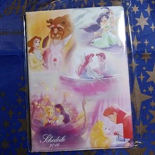 Disney - ディズニー★プリンセス★スケジュール帳★2019