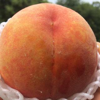 山梨県産黄金桃約2k