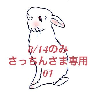 オーブ(AUBE)の★8/14のみ★さっちんさま専用出品ページ 01(アイシャドウ)