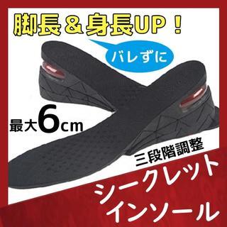 身長 最大6cmアップ 簡単 シークレット インソール(za1)(その他)