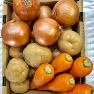 野菜-3点setA