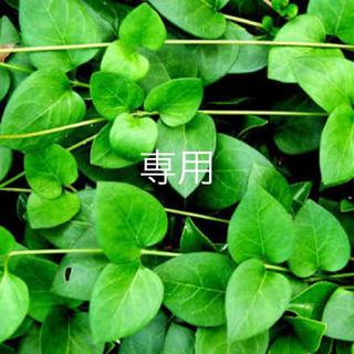 フラワー(flower)の▷vintage 日本製 スカート(ロングスカート)