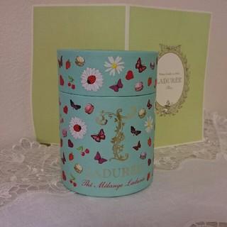 ラデュレ(LADUREE)のLADUREE   紅茶   (未開封)(茶)