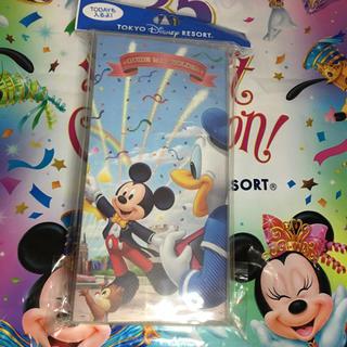 Disney - Todayガイドマップ入れ 新品未使用