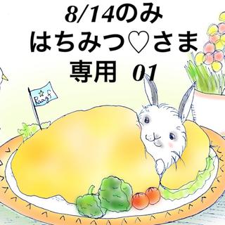 オーブ(AUBE)の★8/14のみ★はちみつ♡さま専用出品ページ 01(アイシャドウ)