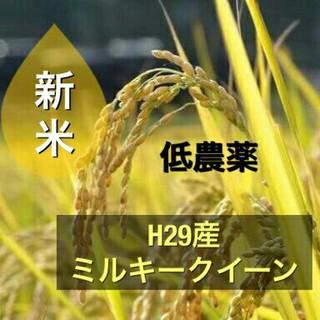 sochanママ様専用‼ミルキークイーン10kg!!