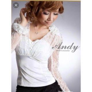 アンディ(Andy)のAndy ブラウス(ナイトドレス)