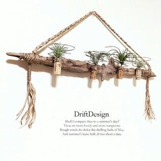 ~Drift Design~ 流木のお洒落な多用途ホルダー エアプランツ 多肉(インテリア雑貨)