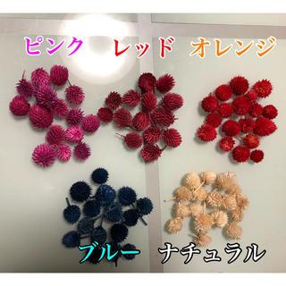 ハーバリウム♡︎花材♪千日紅