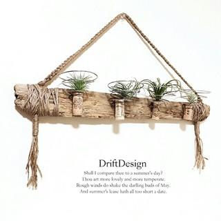 ~Drift Design~ 流木のお洒落な多用途ホルダー エアプランツ(インテリア雑貨)