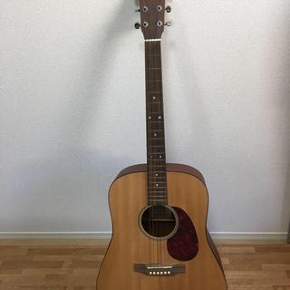 マーティン(Martin)のマーティンギター DM(アコースティックギター)