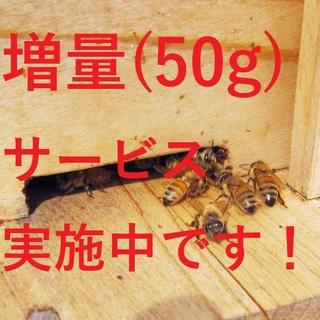 増量!【非加熱・生はちみつ】百花蜜・300g&150g(2本)(その他)