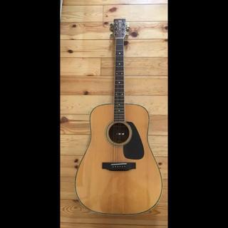 クリッシーモリス(Chrissie Morris)のモーリスギター (アコースティックギター)