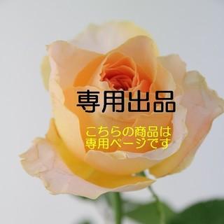 花の種  「ネモフィラ 3種類」を各30粒