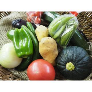 農家直売 詰合せ 60サイズ 送料込み 熊本産(野菜)
