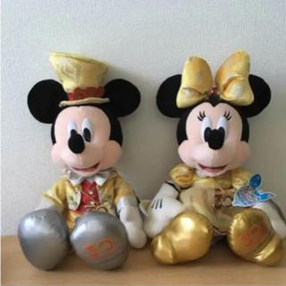 ディズニー(Disney)のディズニーランド ミッキー ミニー 30周年ぬいぐるみ(ぬいぐるみ)