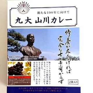 九州大学 カレー 2食入り