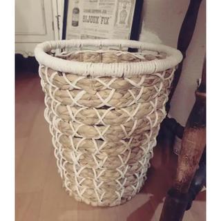 Francfranc - 多目的 マルチ バスケット ホワイト ヒヤシンス 大