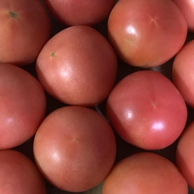 ゆり様専用トマト6キロ 食品/飲料/酒の食品(野菜)の商品写真