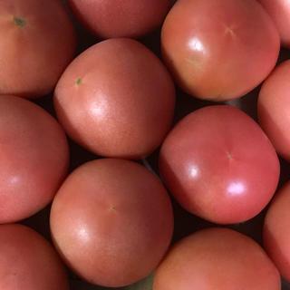 ゆり様専用トマト6キロ(野菜)