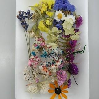 花材21 リクエストの多いかすみ草増量! レジン細工などに最適な小花のセット(ドライフラワー)
