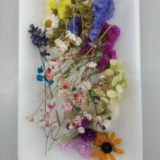 花材22 リクエストの多いかすみ草増量! レジン細工などに最適な小花のセット(ドライフラワー)