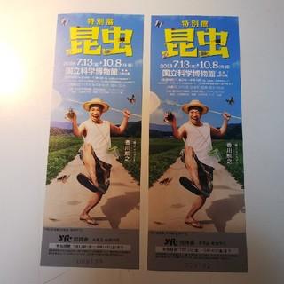 昆虫展 招待チケット2枚セット(美術館/博物館)