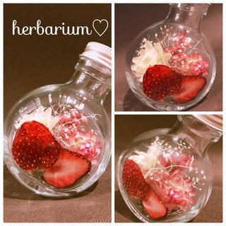 ハーバリウム7 美味しそうなイチゴ♡