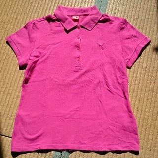 プーマ(PUMA)のプーマ PUMA  ピンク ポロシャツ レディースL(ポロシャツ)