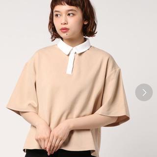 アーカイブ(Archive)のBIGラガーシャツ(ポロシャツ)