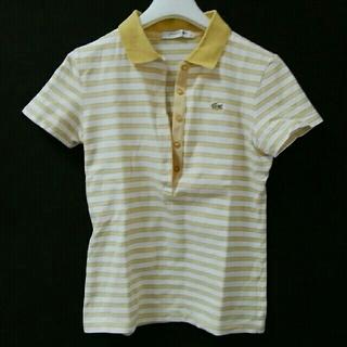 ラコステ(LACOSTE)のラコステ♡レディース34サイズイエローボーダーポロシャツ(ポロシャツ)