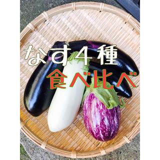 茄子4種❁詰め合わせ(野菜)