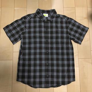 ジンボリー(GYMBOREE)のcrazy8 半袖シャツ 7-8(ブラウス)