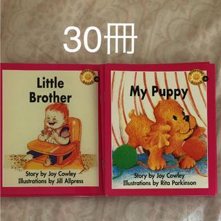 子供英語絵本30冊 新品セール(洋書)