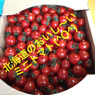 北海道の甘〜いミニトマト初出荷でーす(^○^)