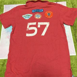 エーズラビット(Asrabbit)のエーズラビット ポロシャツ風tシャツ  Mサイズ(ポロシャツ)