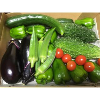 野菜詰め合わせ 自家栽培