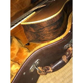 アリアカンパニー(AriaCompany)のD-80 ハカランダ Aria Dreadnought 松岡良治(アコースティックギター)