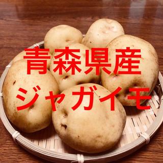 青森県産ジャガイモ【きたあかり】