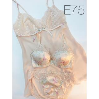 トリンプ(Triumph)のRosey様専用♡【新品】E75 アモスタイル Dress 3点セット(ブラ&ショーツセット)