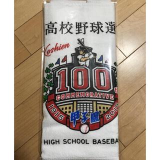 第100回 全国高校野球選手権記念大会 2018年度 全出場校名入り大会タオル(記念品/関連グッズ)