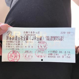 ジェイアール(JR)の青春18きっぷ/青春18切符 1回(1日)分(鉄道乗車券)