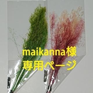 maikanna様専用ページ(ドライフラワー)