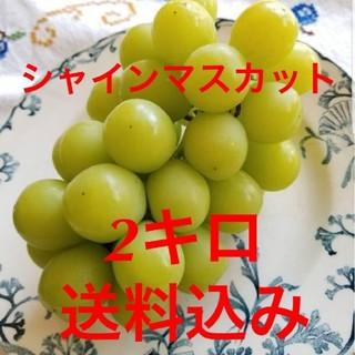 送料込み シャインマスカット 2キロ(4房~5房入り) 産地直送 長野 ブドウ(フルーツ)