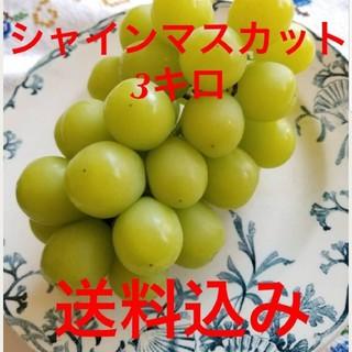 エイトミャン様専用   シャインマスカット 葡萄  3キロ (6房~8房入り)(フルーツ)